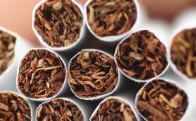 Publikace WHO o zahřívaném tabáku